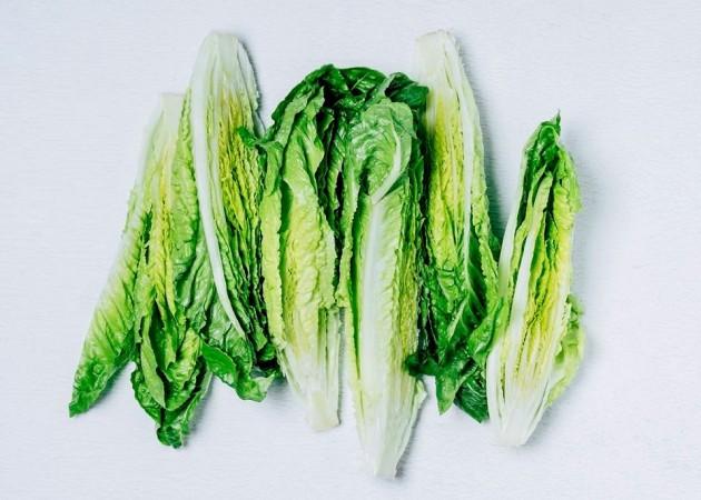 Romaine lettuce, E.coli,