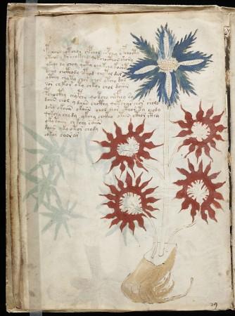 Voynich manuscript, mystery,