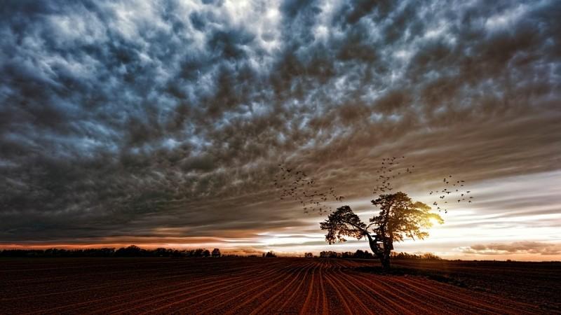 Earth, atmosphere,