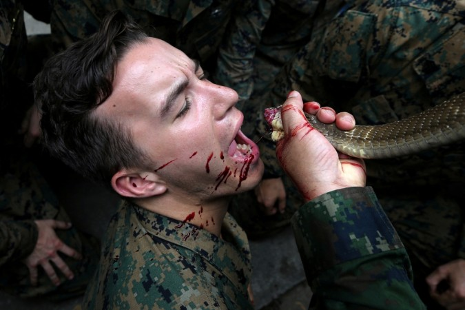 US marine drinking snake blood