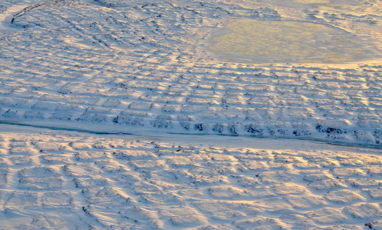 Tundra polygons on Alaska's North Slope. As permafrost thaws, this area is likely to be a source of atmospheric carbon before 2100