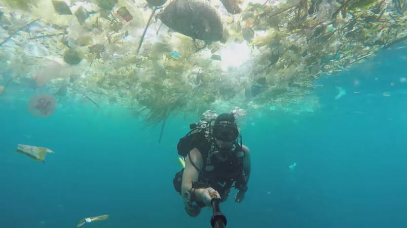 Diver captures underwater landscape filled with plastic ...