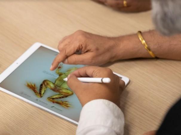 Apple, App Accelerator, Bengaluru , app development, Froggipedia