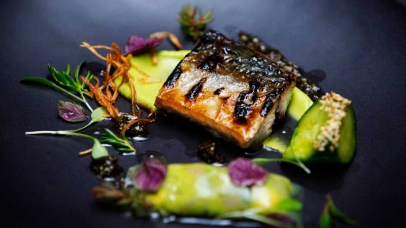 Flame Grilled Bonito with Pickled Cucumber, Celtic Mustard and Shiso