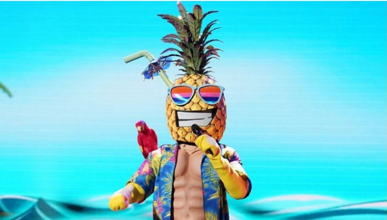 The Pineapple in 'The Masked Singer'