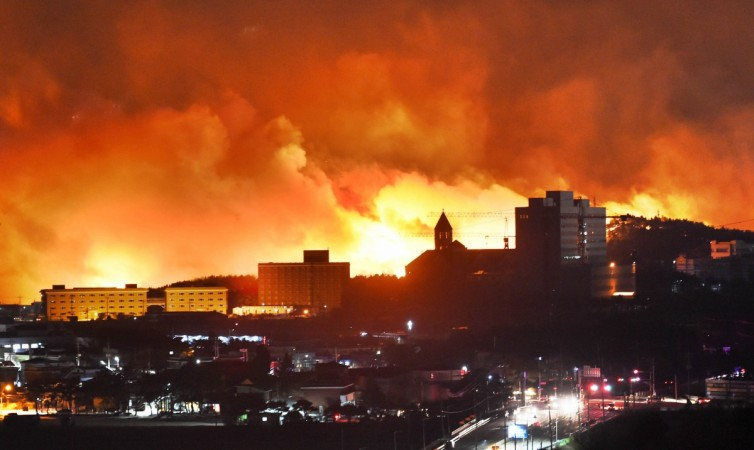 South Korean forest fire