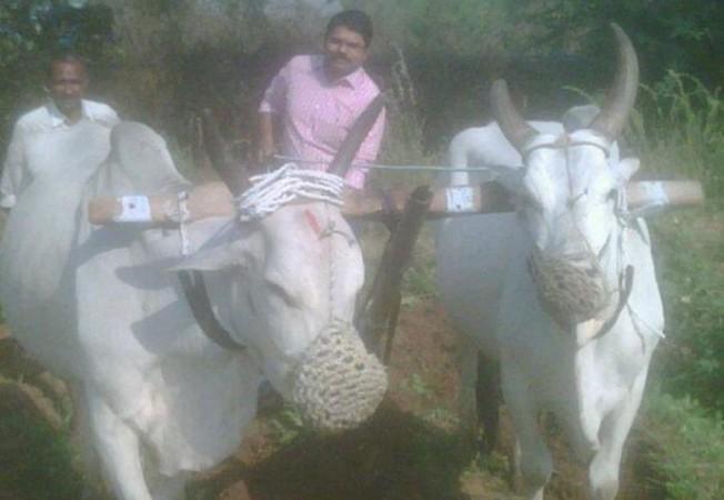 Madhura Sreedhar Reddy
