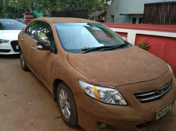 cow dung on car