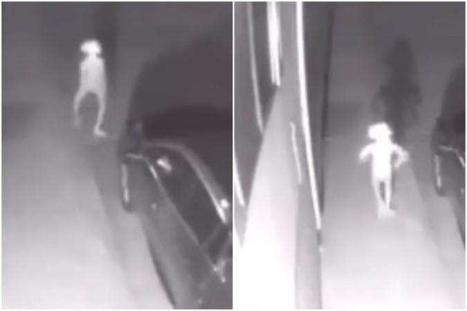 Alien like creature that looks like Elf caught on CCTV camera