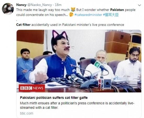 cat filter tweet 2