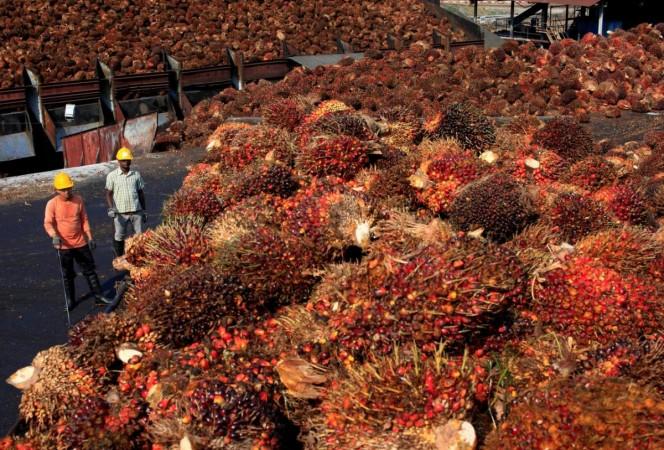 palm oil Malaysia
