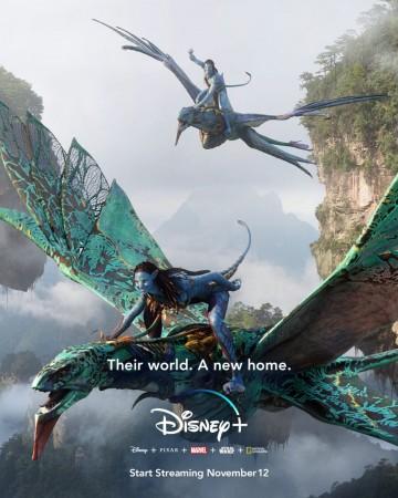 James Cameron Avatar on Disney