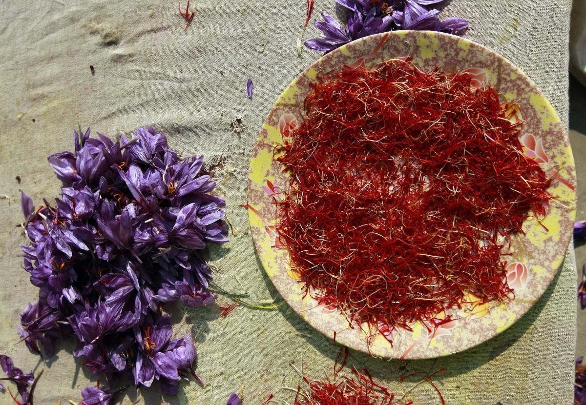india exports spices saffron 2015-16 pepper chilli cardamom turmeric garlic modi govt