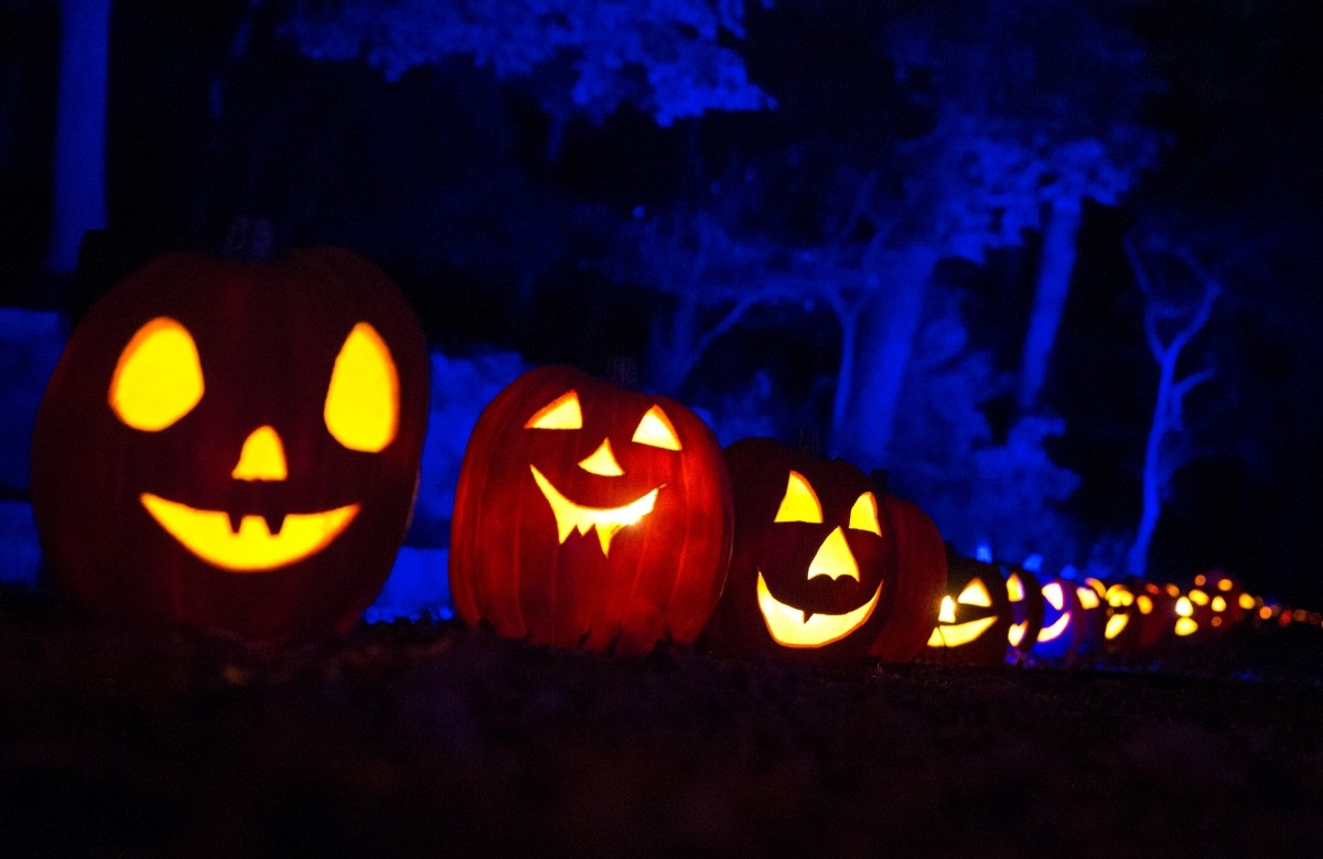 happy halloween 2016: best quotes, wishes, greetings, messages to be