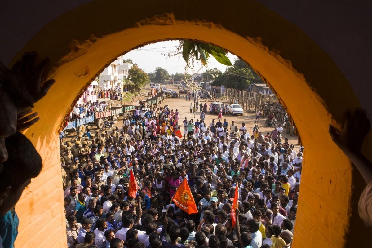 Jallikattu protests, Jallikattu ban