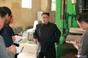 North Korean economy falls lowest in 20 years as sanctions hit hard