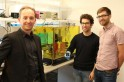 Scientists develop new photon chip which could revolutionise quantum computing