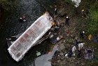 At least 20 people were killed on Sunday when a bus plummeted off a road and into a ravine in Mexico's Gulf Coast state of Veracruz.