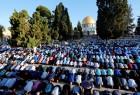 穆斯林穆斯林向阿拉伯之旅祈祷……在欧洲的祈祷者们。