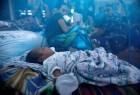 在一个村庄里的另一个村庄被释放在阿尔茨海默岛,被释放的蚊子,被袭击,而巴基斯坦的叛军成员,他们被驱逐到了索马里,阿尔维亚族。