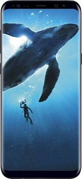 Samsung Galaxy S8 (4GB   64 GB, Midnight Black)