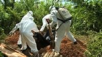 Journalists face 'invisible threat' of Ebola