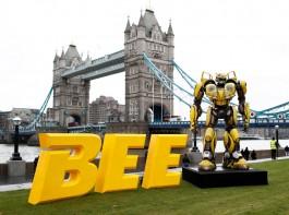 Bumblebee Screening In London