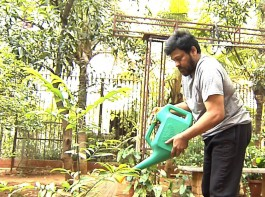 Mega Star Chiranjeevi accepts Green Challenge