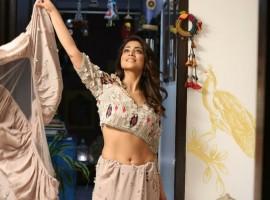 Shriya Saran Looks Elegant in Saree
