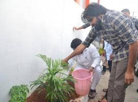 Powerstar Pawan Kalyan accepts Chiranjeevi challenge