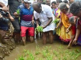Karnataka CM Kumaraswamy turns farmer