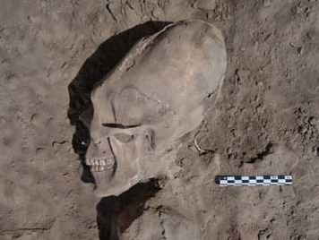 Alien-Like Skulls Excavated in Mexico