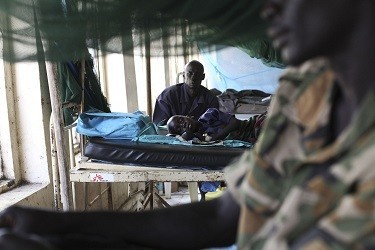 World Health Day 2014: WHO Highlights on Preventing Dengue, Malaria and Other Vector-Borne Diseases (Reuters)