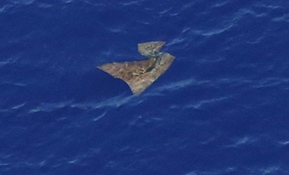 Malaysian Airlines flight MH370 search: An object floats in the Indian Ocean. (Photo Reuters)