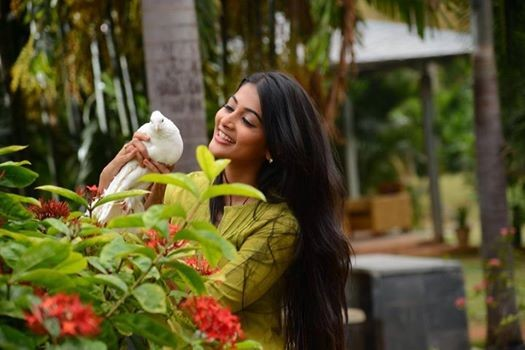 Oka Laila Kosam Review: Pooja Hegde Wins Lots of Accolade For her Performance