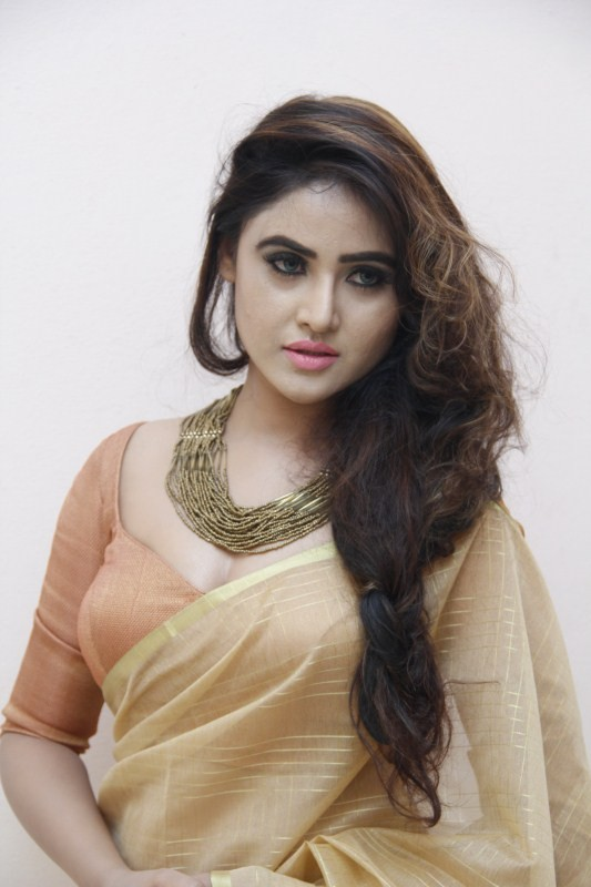 Sony Charishta,Sony Charishta new pics,Sony Charishta new images,Sony Charishta new stills,Sony Charishta new pictures,Sony Charishta new photos,Sony Charishta hot pics,Sony Charishta hot images,Sony Charishta hot stills,Sony Charishta hot pictures