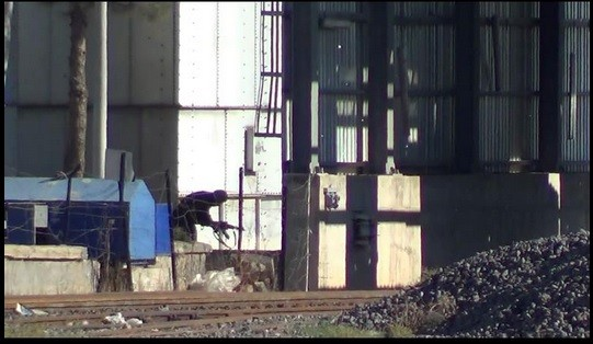 An ISIS fighter crossing into Kobane from Turkey.