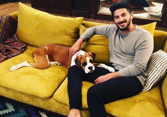 Dulquer Salmaan dog