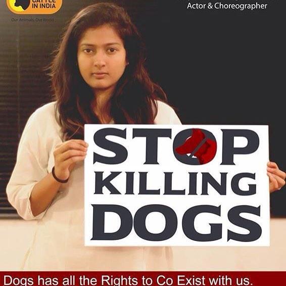 Vishal and Gayathri Raghuram in Stop Killing Dogs campaign,Vishal in Stop Killing Dogs campaign,Gayathri Raghuram in Stop Killing Dogs campaign,Stop Killing Dogs campaign,Vishal and Gayathri Raghuram,Vishal,Gayathri Raghuram
