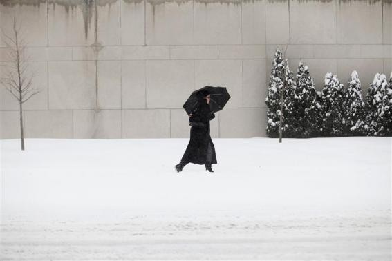 A woman uses a umbrella to protect her from the snow in Detroit, Michigan January 2, 2014.