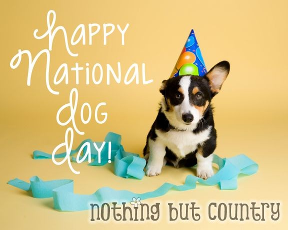 National Dog Day,happy National Dog Day,National Dog Day 2015,National Dog Day quotes,National Dog Day pictures,National Dog Day message