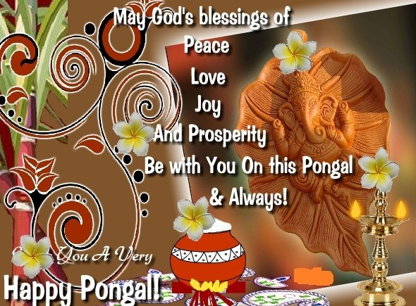 Pongal 2018 here are quotes smses picture greetings and whatsapp pongal 2017 pongal wishes pongal messages pongal 2018123 greetings m4hsunfo
