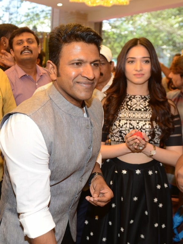 Puneeth Rajkumar,Tamannaah,Puneeth Rajkumar and Tamannaah,Pothys showroom,Pothys showroom in Bengaluru,Pothys in Bengaluru