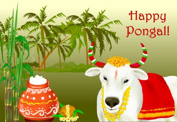 Happy pongal 2017 best sms wishes in english gif images picture pongal 2017 pongal wishes pongal messages m4hsunfo
