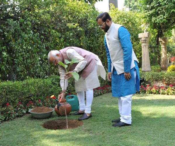 Narendra Modi Planted a Kadam Tree at 7RCR,World Environment Day,Narendra Modi,Modi,Indian Prime minister Narendra Modi