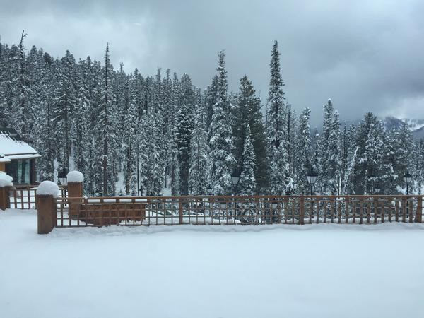 Condition of Jammu and Kashmir due to heavy snowfall