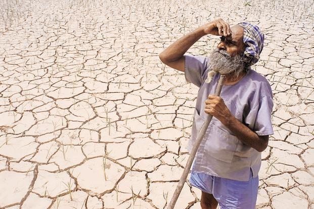 Farmers' suicide