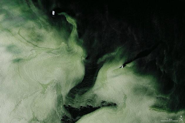 nasa, antarctica, space, environment, green ice, mystery,