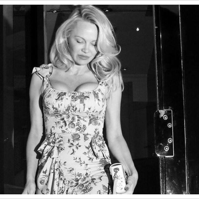 Pamela Anderson,Pamela Anderson lingerie,Pamela Anderson lingerie ad,Pamela Anderson in Coco de Mer,Pamela Anderson hot pics,Pamela Anderson hot images,Pamela Anderson hot photos,.Pamela Anderson hot stills,Pamela Anderson hot pictures