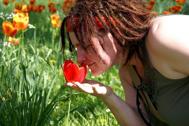 Smell, flower